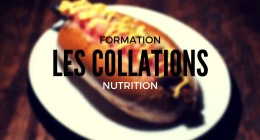 COLLATION MUSCULATION