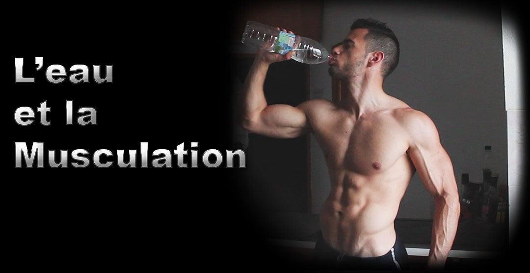 Muscle , eau , mon expérience