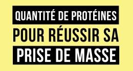Prise de masse et quantité de protéines