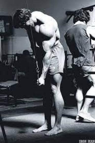 programme arnold schwarzenegger triceps