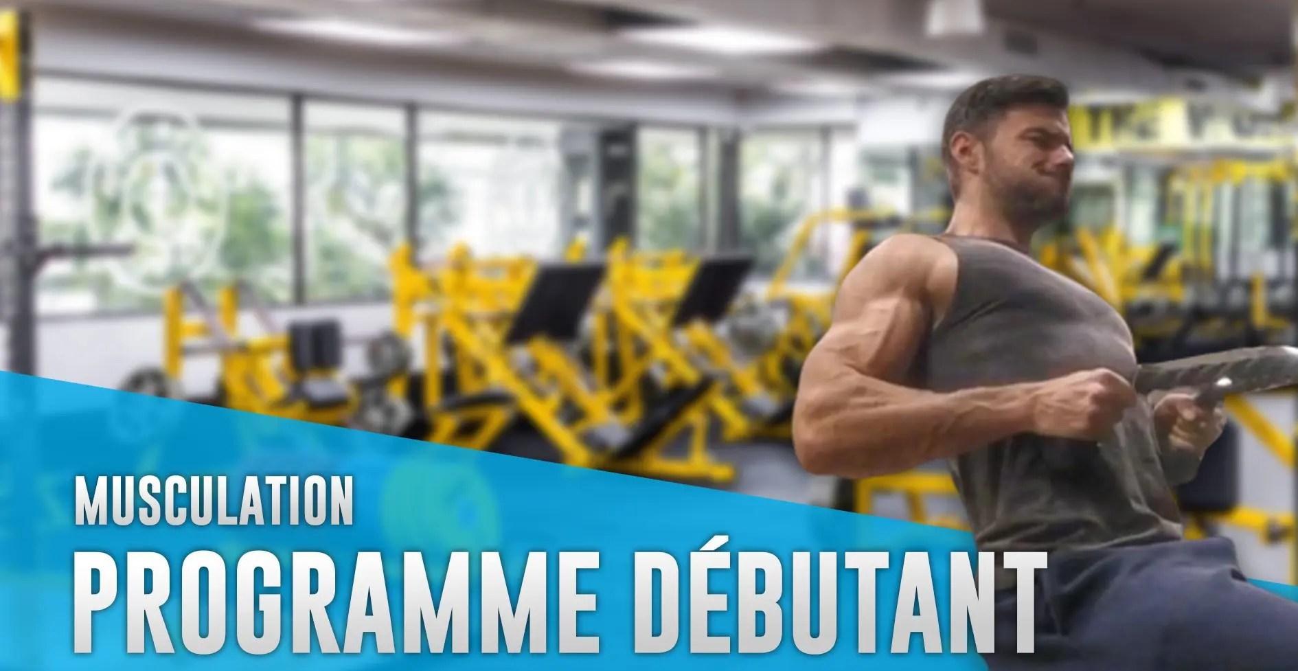 Programme musculation homme débutant