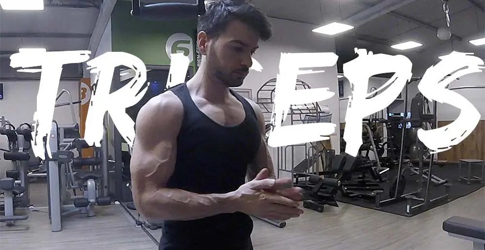 triceps musculation