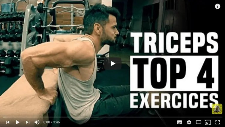 meilleur exercice triceps