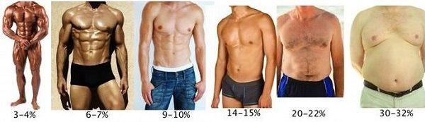 porcentajesdegrasayabs