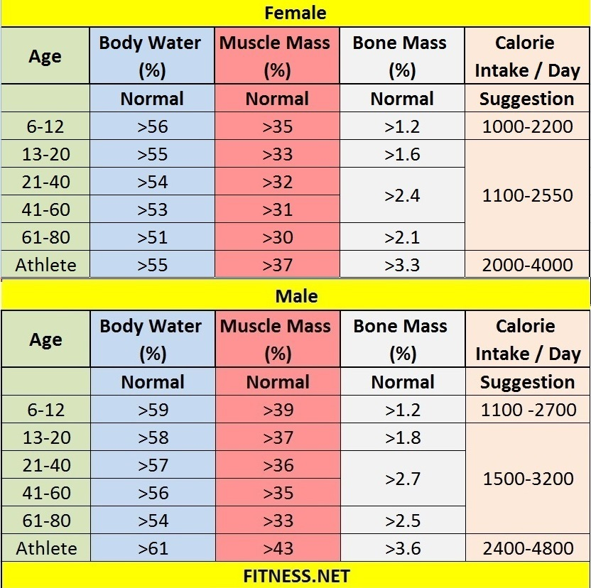 Bone mass chart lbs heart impulsar co