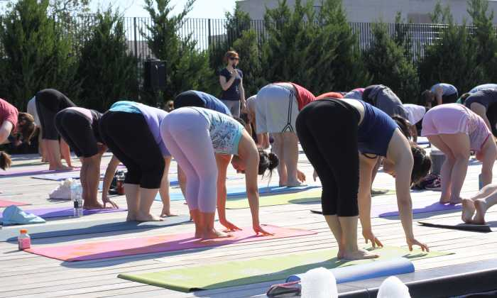 Yoga Types – Quick Guide to the Particular Types of Yoga