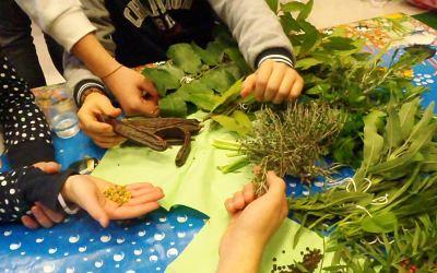 Progetto Il mio Herbario: i laboratori scolastici