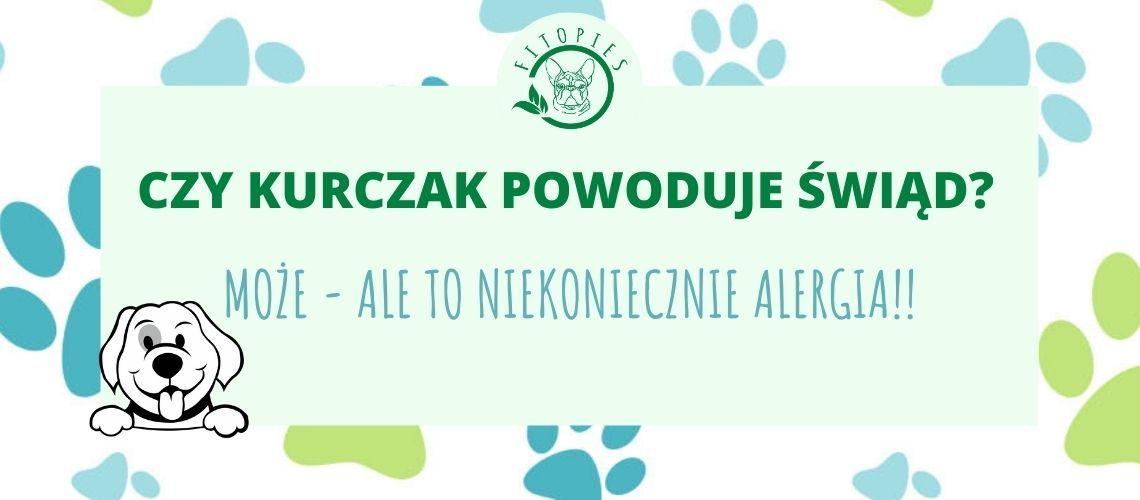 alergia na kurczaka u psa
