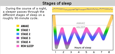 stage of sleep