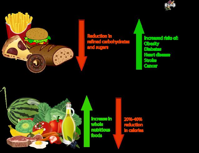 Caloric restriction Caloric restriction benefits Caloric restriction pathway intermittent fasting benefits western diet vs healthy diet healthy diet vs unhealthy diet
