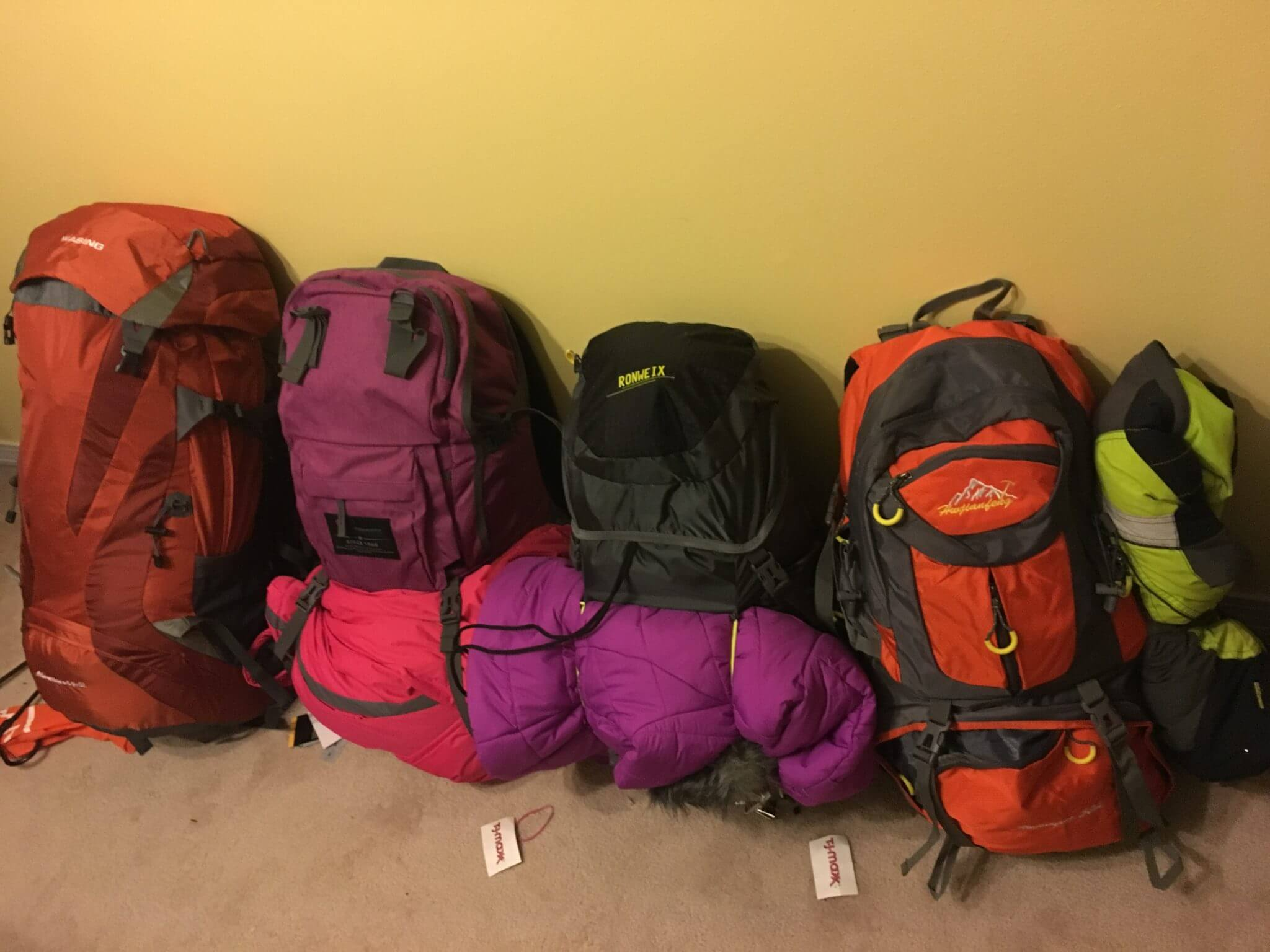 20af9167d4da0 Luggage and Backpacks for long term family travel