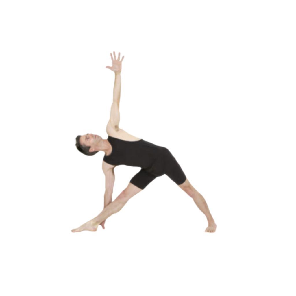 Triangle Pose (Utthita Trikonasana) - FITZABOUT