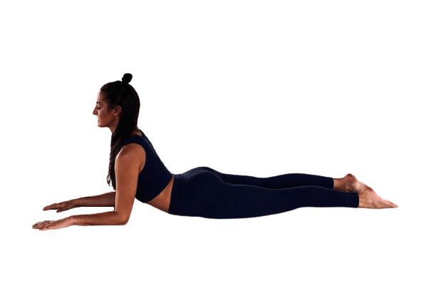 Sphinx Pose (Salamba Bhujangasana) to ease your back pain - fitzabout