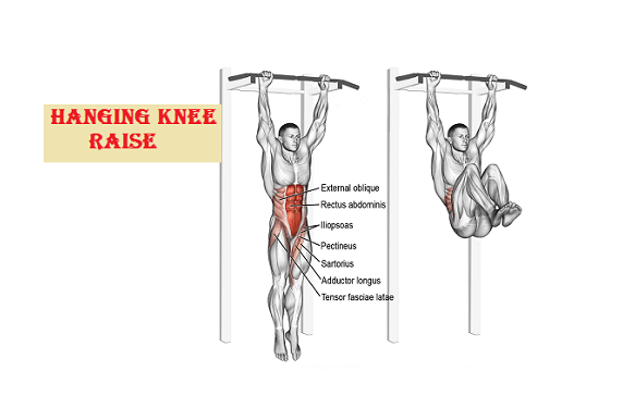Hanging knee raise ab workouts - fitzabout