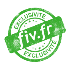 0013-FIV.FR-Stam vert
