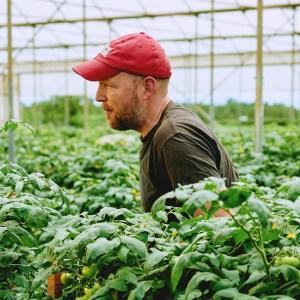 patrick horan farming