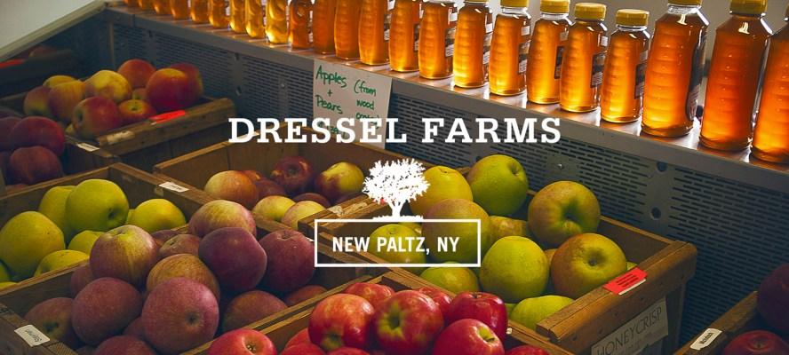 FAF_Web_DF_Header Dressel Farms