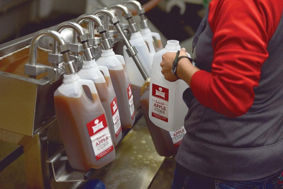 Filling Cider - Five Acre Farms