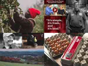 Five Acre Farms Home Page Image