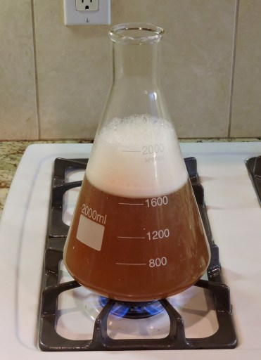 Making Starter Wort