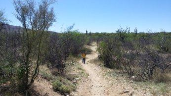 More hiking