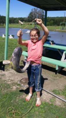 8.5 pound catfish