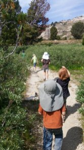 Hiking in Lamoille Canyon, Nevada