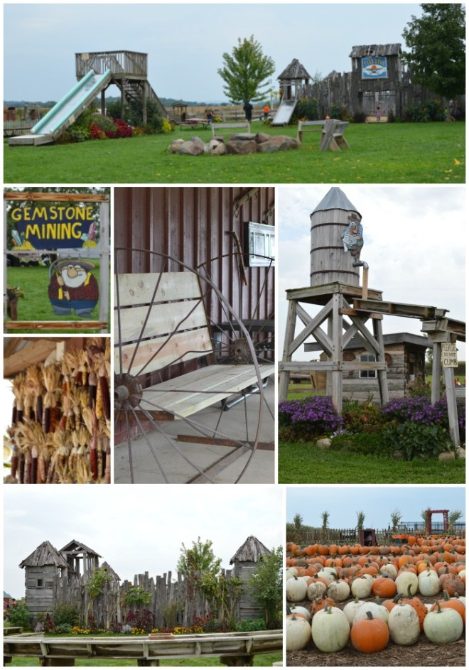 Schuster's Farm Visit | Five Senses Palate
