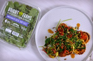 Baby Kale and Roasted Squash with Apple Cider Sauce Recipe | Five Senses Palate