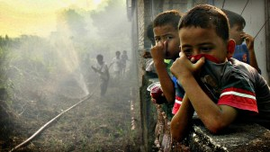 "Children cover their noses near burnt land in Marpoyan Damai sub district, in the outskirts of Pekanbaru...Children cover their noses near burnt land in Marpoyan Damai sub district, in the outskirts of Pekanbaru, in Indonesia's Riau province June 20, 2013. Haze from fires in Indonesia blanketing Singapore could persist for weeks or longer, Singapore's Prime Minister Lee Hsien Loong said on Thursday, as the smoke drove air quality to ""hazardous"" levels and disrupted business and travel in the region. REUTERS/Azwar  (INDONESIA - Tags: ENVIRONMENT DISASTER TPX IMAGES OF THE DAY)"