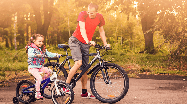 best bicycle for adults 2019