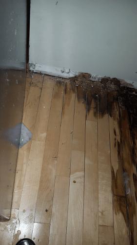 Refrigerator Water Leak