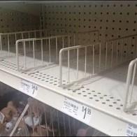 Fencing as Shelf Divider