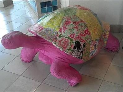 Margarit Turtle Riding Closeup