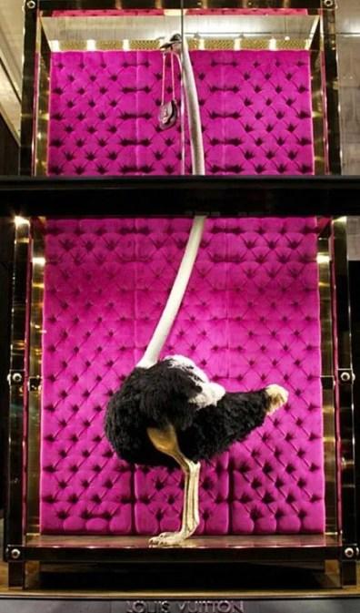 Louis Vuitton Ostrich Bag Fixture