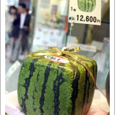 Boxy Watermelon Visual Merchandising Main