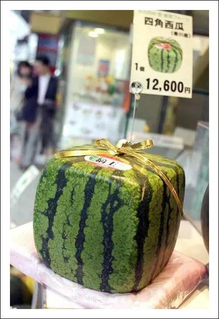 Boxy Watermelon Visual Merchandising Main