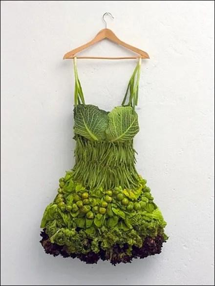 Lady Gaga Salad Skirt Fashion Statement