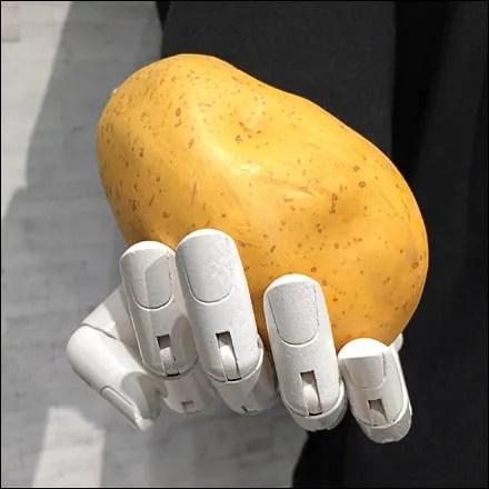 Potato Propping Main