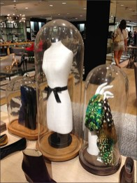 Tall, Thin, Lithe Bell Jars in Assorted Sizes