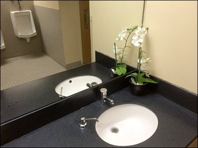 Restroom Floral Bouquet Amenity Main