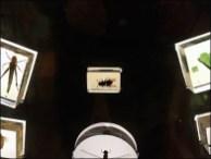 Bi-Directional Bug Magnifier