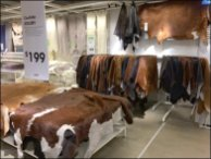 Cowhide Merchandising at IKEA