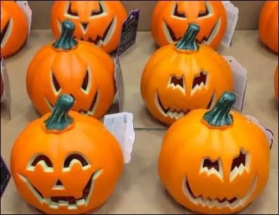 Cut Pumpkin 11 Up C