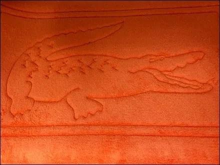 Lacoste Brands A Bath Mat