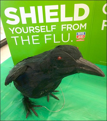 Rite-Aid Crows About Flu Shots