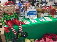 Inflatable Christmas Elf on a Shelf