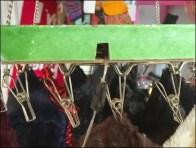 Christmas Clip Carousel 2