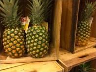 Dole Pineapple Pyramid 2