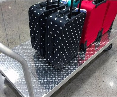 Diamond Plate Luggage Cary Rear